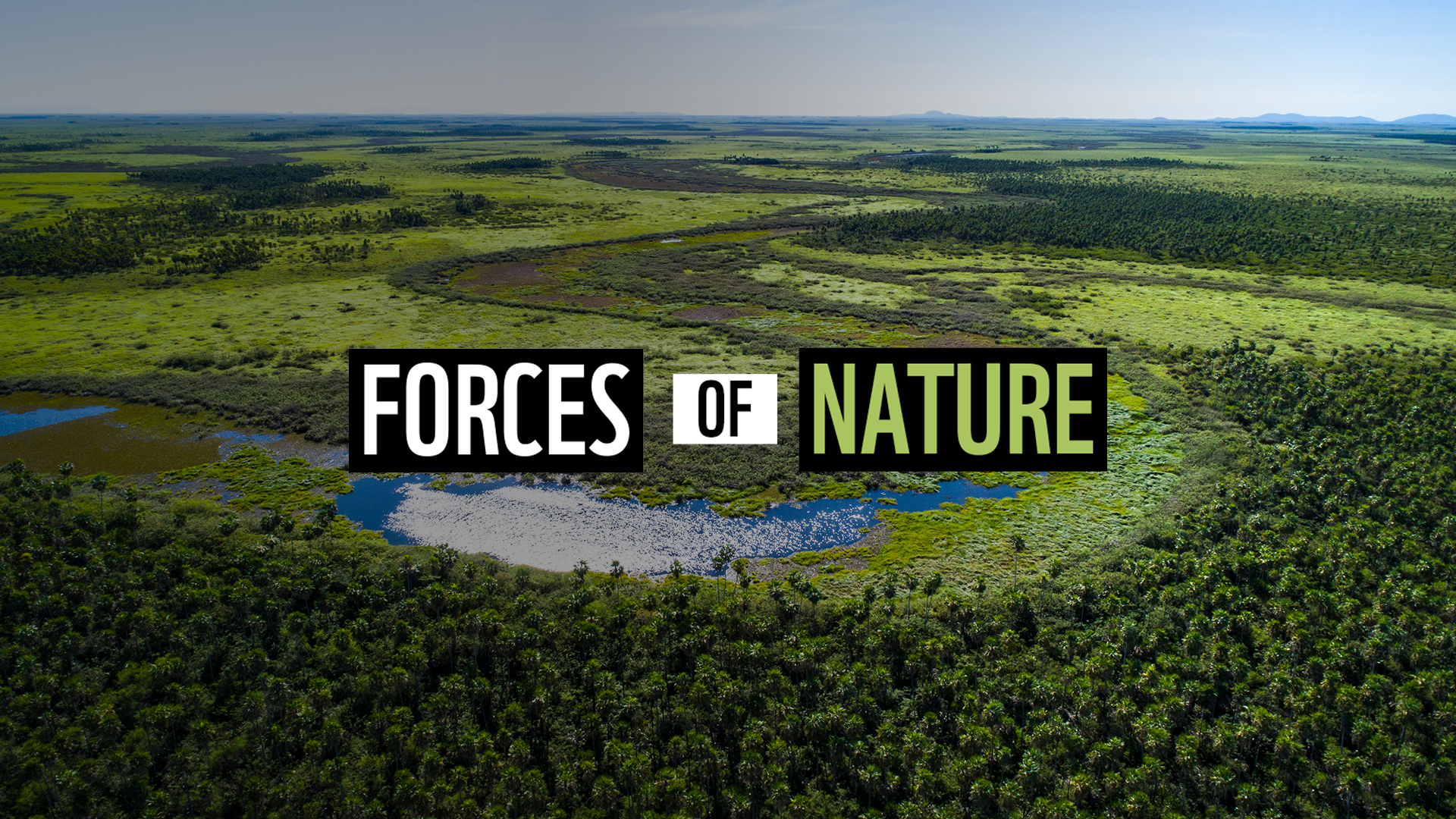 Forces-of-nature-Podcast-60th