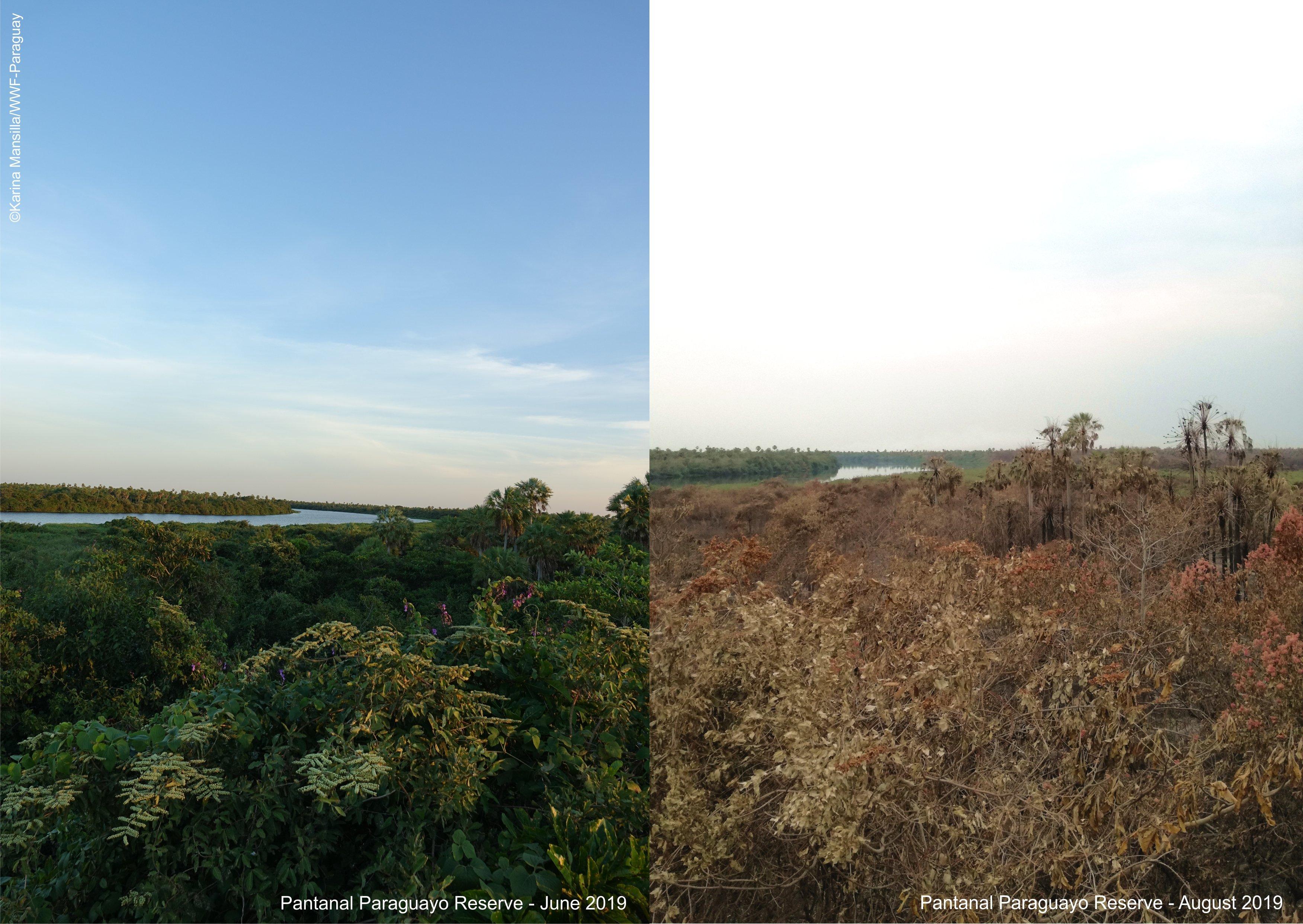 Pantanal Paraguayo Reserve - before after _ Copyright Karina Mansilla - WWF Paraguay